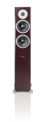 dyn x34 front rosewood