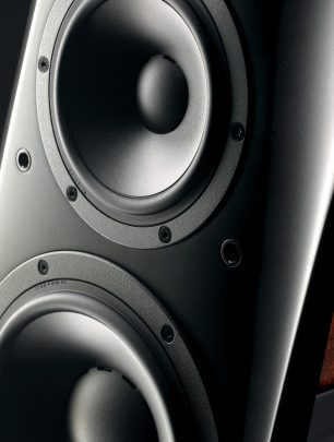 dynaudio c4 platinum detail1